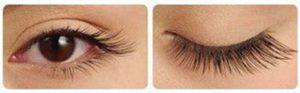Fresh-Spa-Bali-Eyelash-Extensions-Lashes-Movie-Star